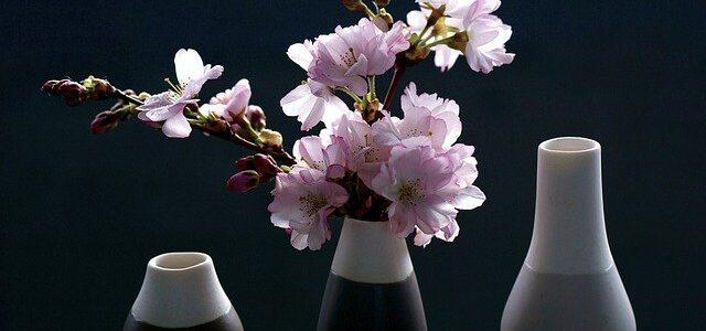 Vasi di fiori: tipologie, opinioni, materiali e prezzi